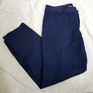 Banana Republic Navy Sloan Fit Pants 6P